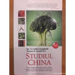 Studiul China